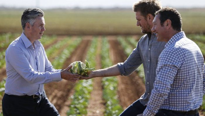 Coles MD John Durkan, chef Curtis Stone and John Said, CEO of Fresh Select, at the launch of the $50 million Coles Nurture Fund, which will provide interest-free loans and grants to food producers. Photo: Eddie Jim